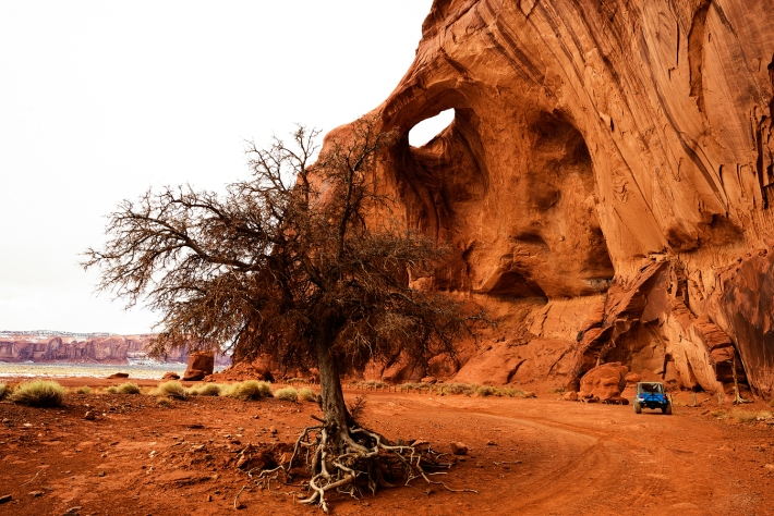Dead tree and natural arch, in backcountry of Navajo Monument Valley
